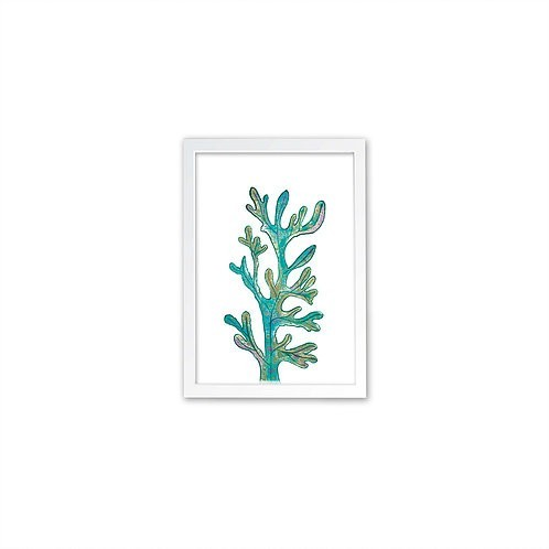 Magical Seaweed print - White frame - Mary Tale