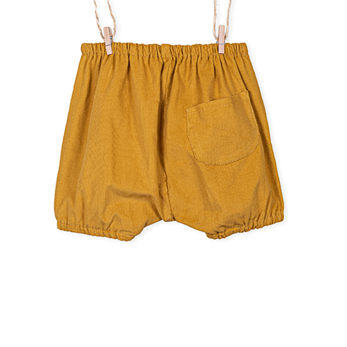 Mustard Shorts Back